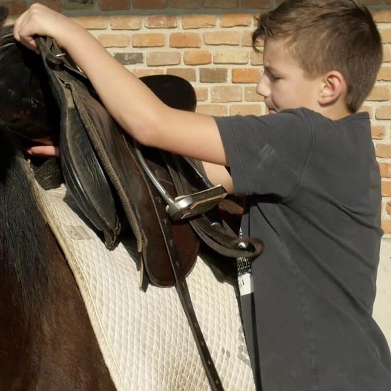 Ponyausflüge und Reitunterricht im Familienhotel Reiterhof Pichler in Geboltskirchen